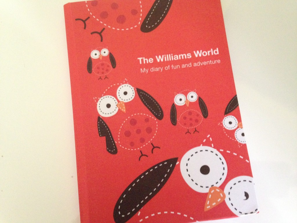 Owl Design Diary