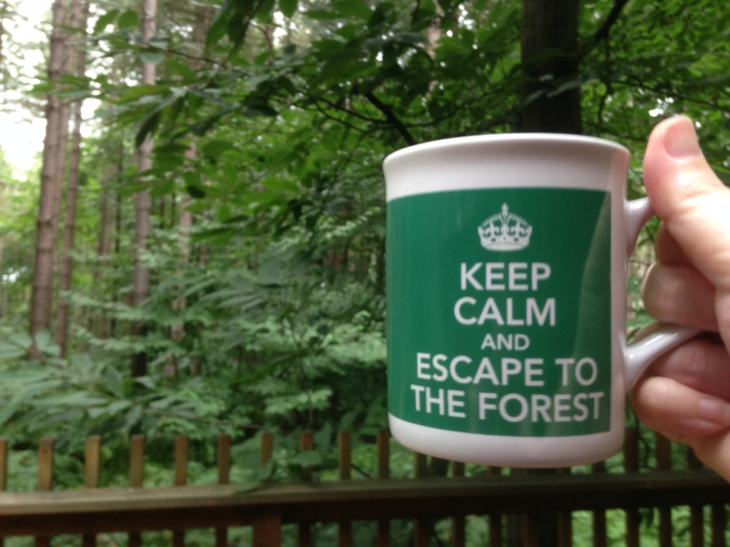 Forest Holidays mug