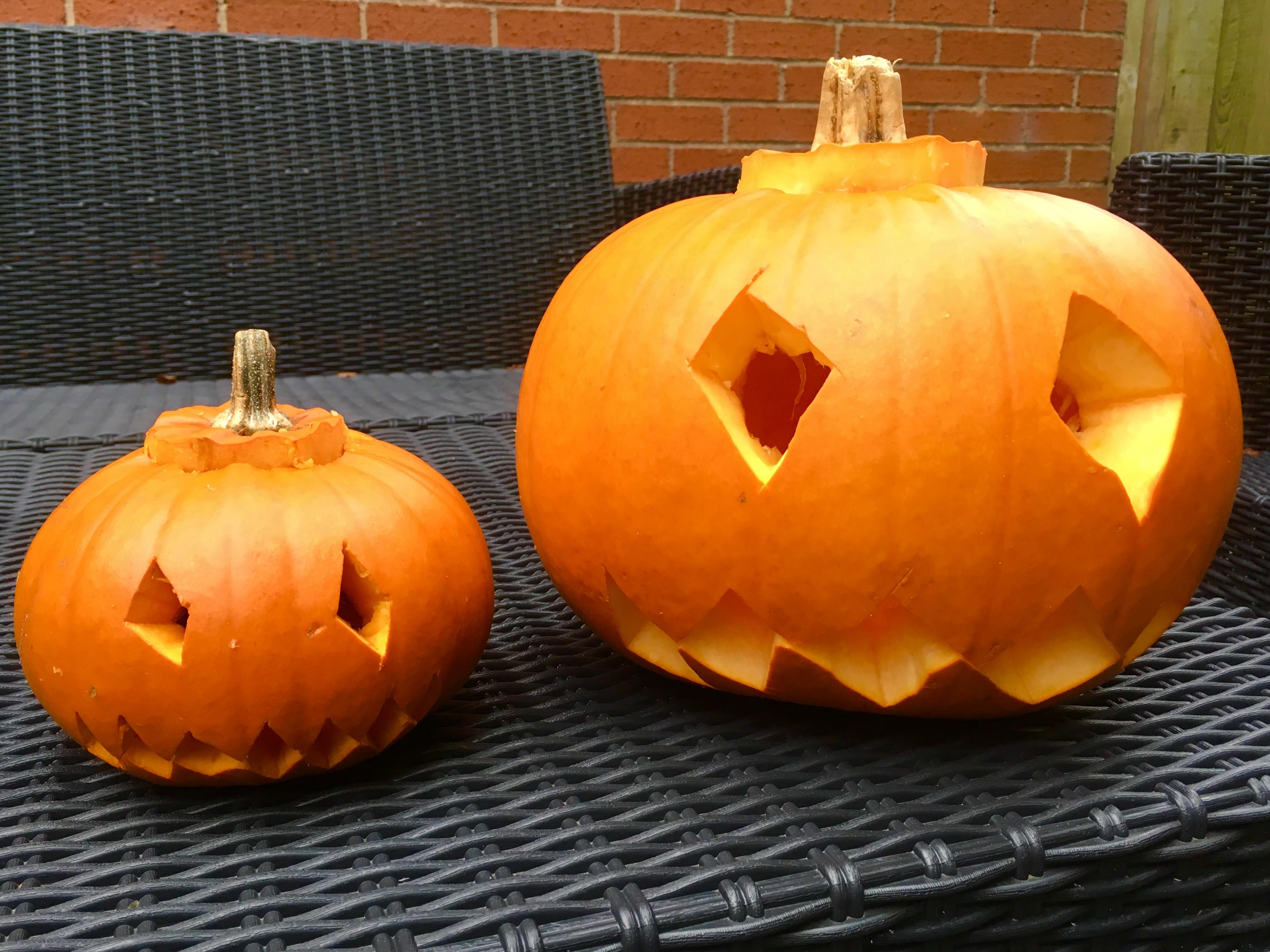 Pumpkin Carving Zorbing And Shingles Williams World Blog