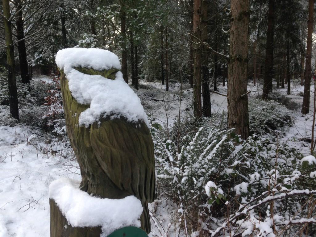 Snow at Centerparcs