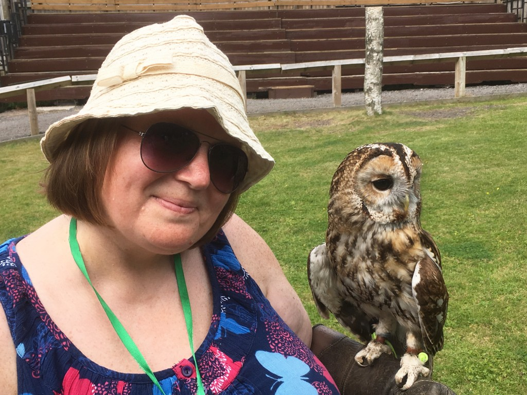 Cheshire Owl Experience