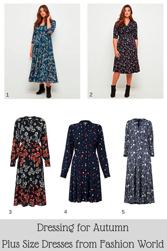 Autumn Dresses from Fashion World