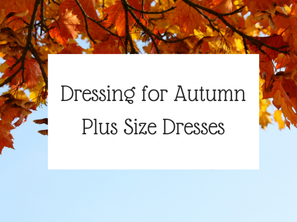 Plus Size Autumn Dresses