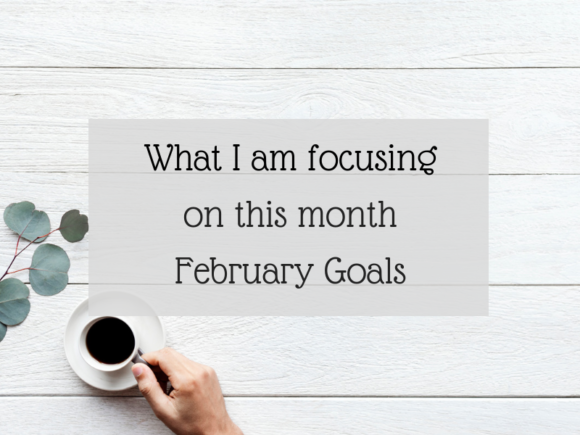 What I am focusing on this month - February Goals