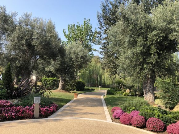Sani Asterias grounds